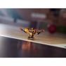 Лего 70662 Коул: мастер Кружитцу Lego Ninjago