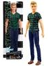 Кукла Барби Кен Barbie Fashionistas DWK45